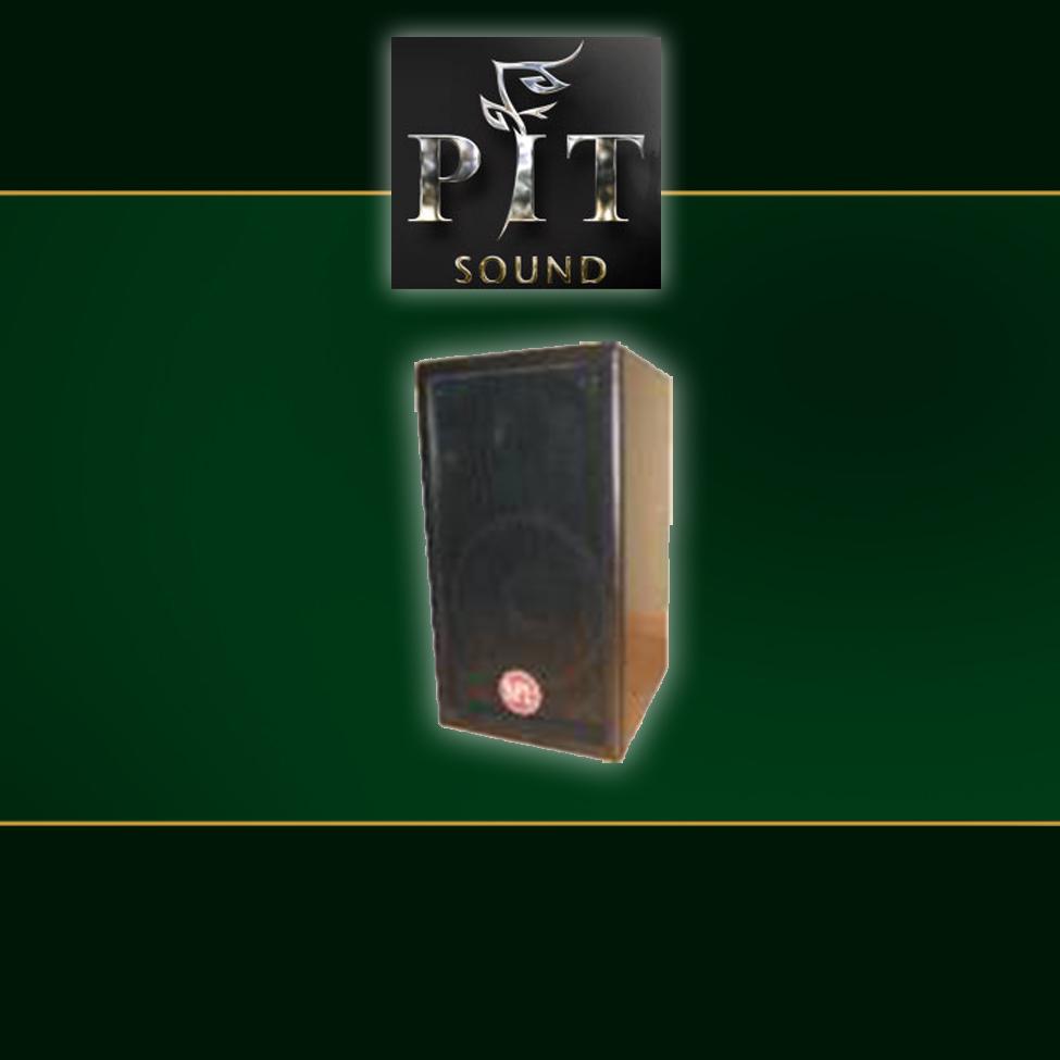 PIT SOUND PA ΗΧΕΙΟ  10 2B